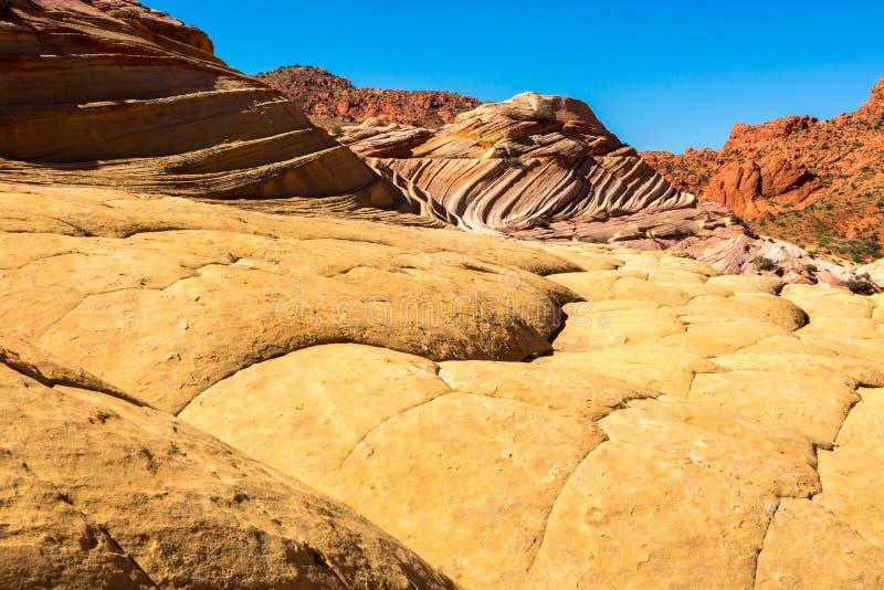 Arizona-Utah-Vermillion Cliffs National Monument, S Coyote