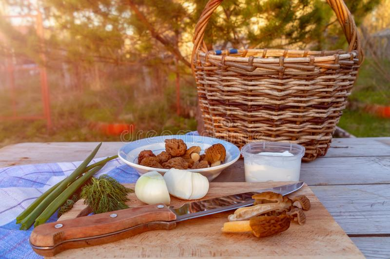Cozimento dos cogumelos do Morel da mola com creme de leite e cebola fotos de stock royalty free