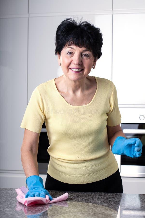 Cozinha da limpeza imagens de stock royalty free