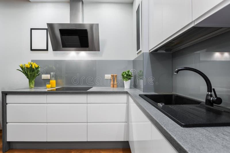 Cozinha luxuosa e simples imagens de stock