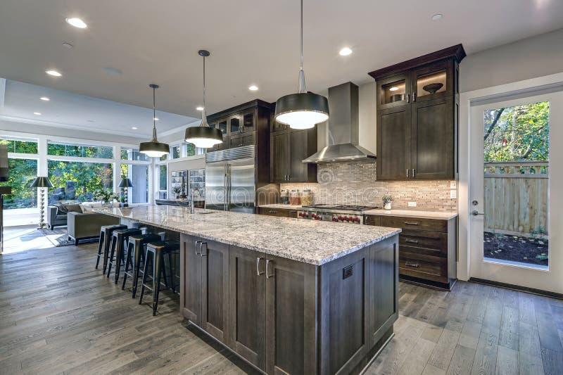 Cozinha moderna com os armários de cozinha marrons imagens de stock