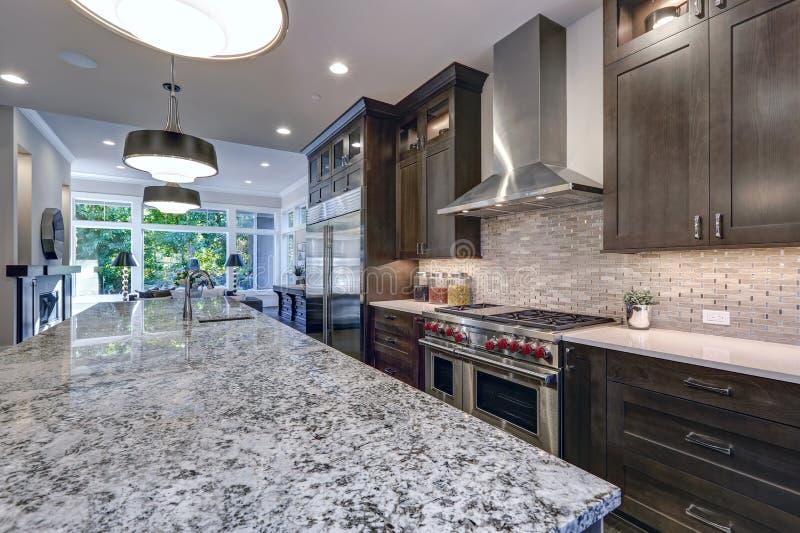 Cozinha moderna com os armários de cozinha marrons fotografia de stock royalty free