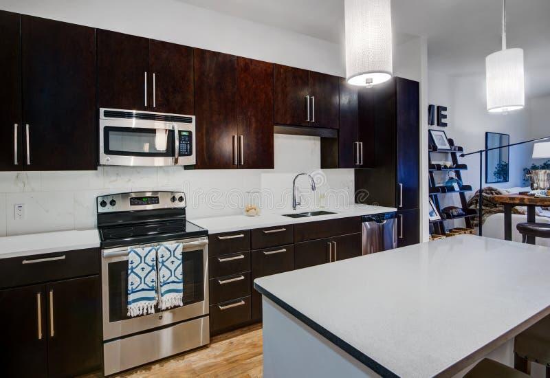 Cozinha moderna do apartamento fotografia de stock