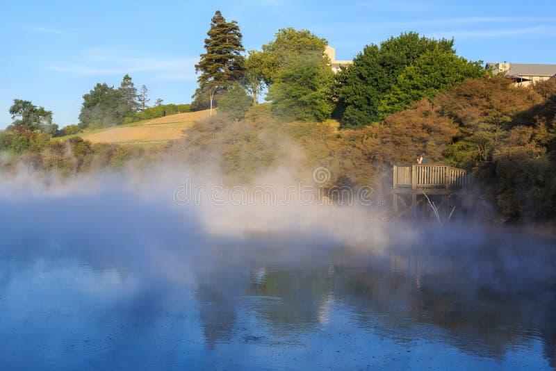 Cozinhando o lago no parque de Kuirau, Rotorua, Nova Zelândia fotos de stock