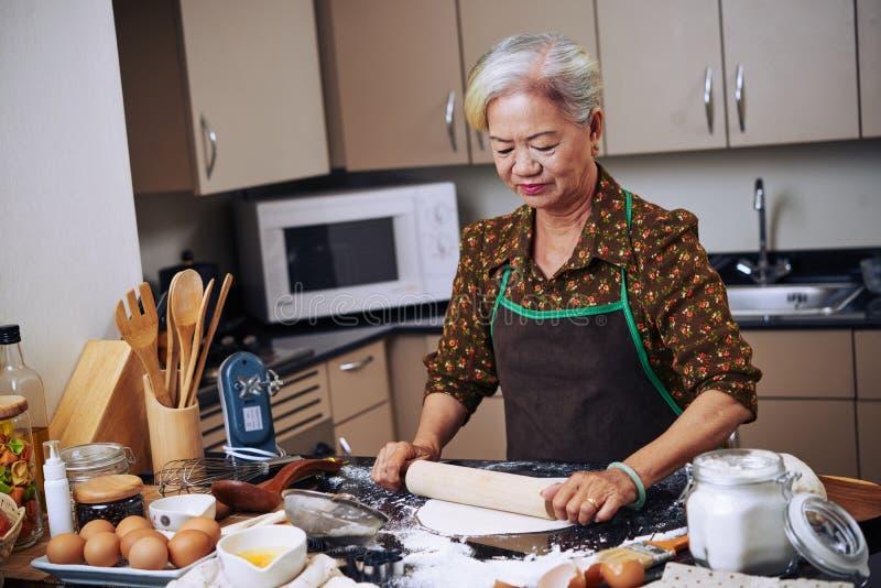 Cozinhando a senhora imagens de stock royalty free