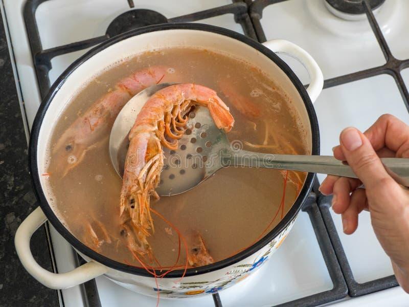 Cozinhar grandes camarões frescos numa tigela Camarões frescos cozidos gigantes, fechem imagens de stock