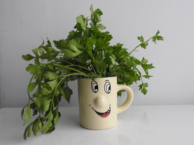 Cozinhar pode ser divertimento! imagens de stock royalty free