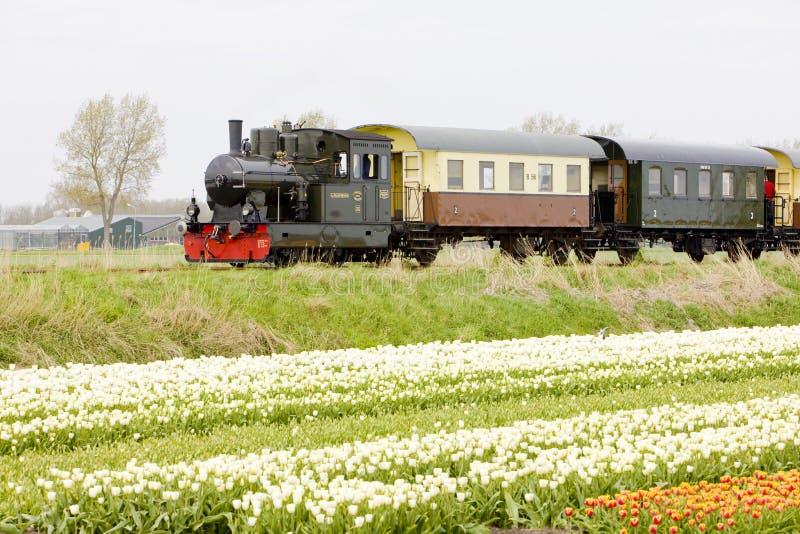 Cozinhe o trem, Hoorn - Medemblik, Holanda de Noord, Pa?ses Baixos imagem de stock