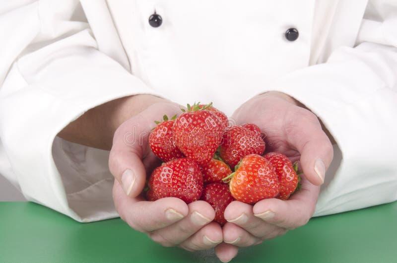 Cozinheiro chefe fêmea que guardara algumas morangos frescas fotos de stock royalty free