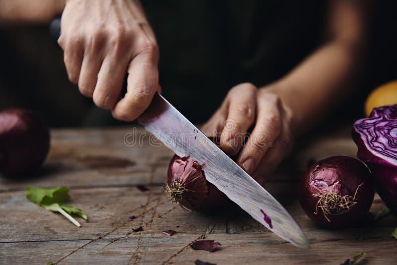 Cozinheiro chefe que corta a cebola vermelha foto de stock