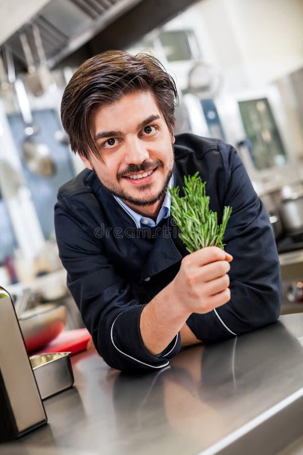 Cozinheiro chefe que verifica o frescor de um grupo das ervas fotos de stock royalty free