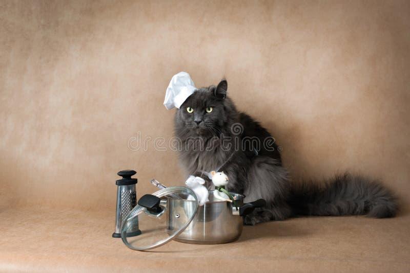 Cozinheiro do cozinheiro chefe fotografia de stock royalty free