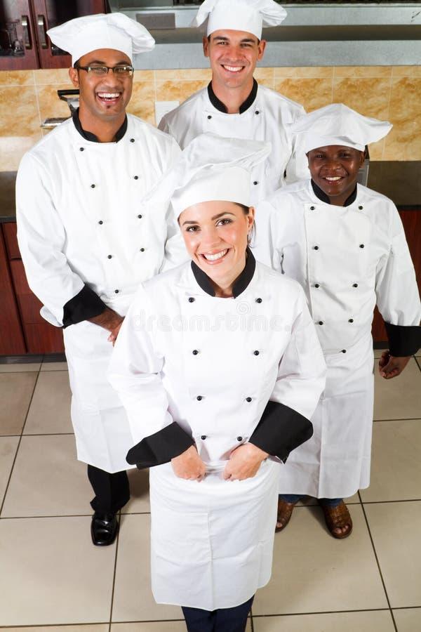 Cozinheiros profissionais fotografia de stock