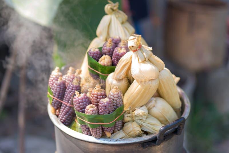 Cozinhou o milho doce fresco ? alimento famoso da rua imagens de stock royalty free