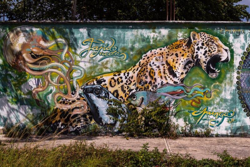 COZUMEL, MÉXICO; 3 DE AGOSTO DE 2018 Arte urbano fotos de archivo libres de regalías