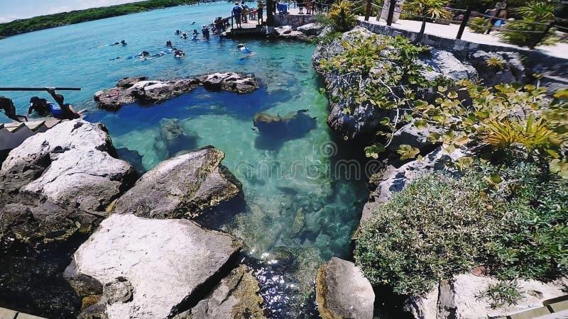 Cozumel, Mexique photo libre de droits