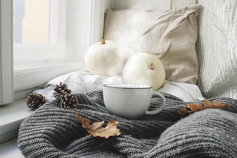 Cozy autumn morning breakfast in bed still life scene. Steaming cup of hot coffee, tea standing near window. Fall. Thanksgiving concept, white pumpkins, pine royalty free stock photo