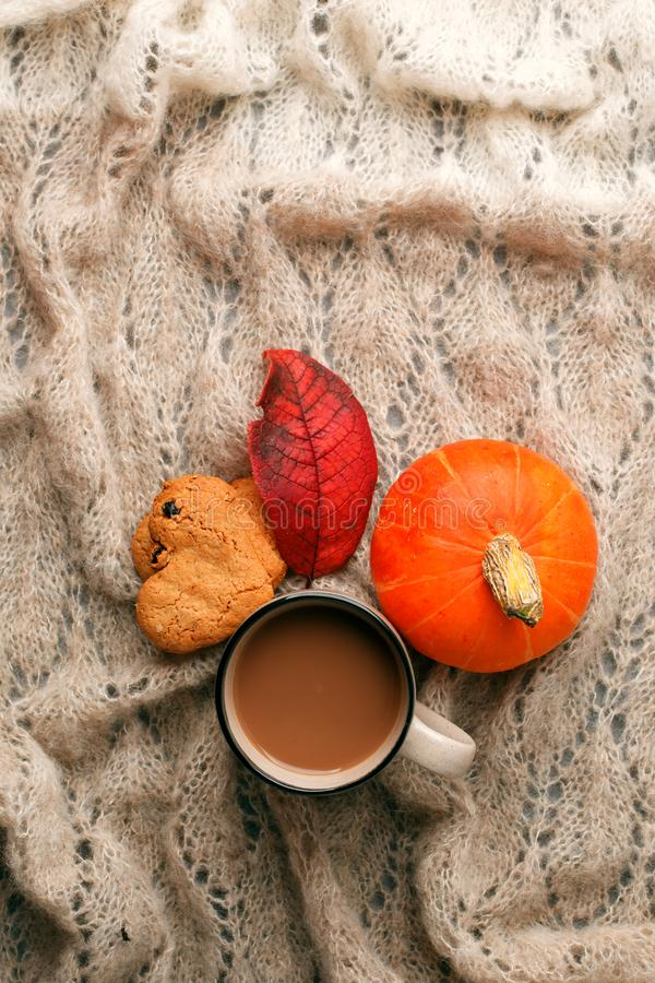 Cozy autumn morning with cup of cocoa and chocolate, dried oranges leaves, pumpkin and cookies on warming handcrafted plaid royalty free stock photo