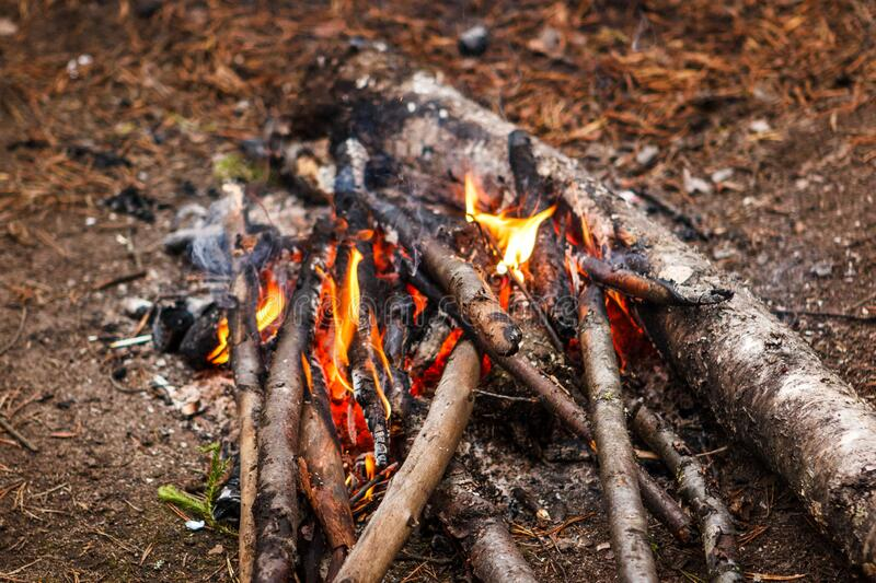 Bonfire in autumn forest. Family weekend. stock photo