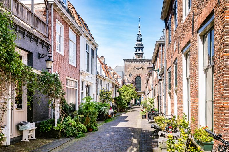 Cozy green street in Haarlem in the Netherlands. Haarlem, The Netherlands - May 31, 2019: Cozy green little street with lots of pots and plants in Haarlem with royalty free stock photo
