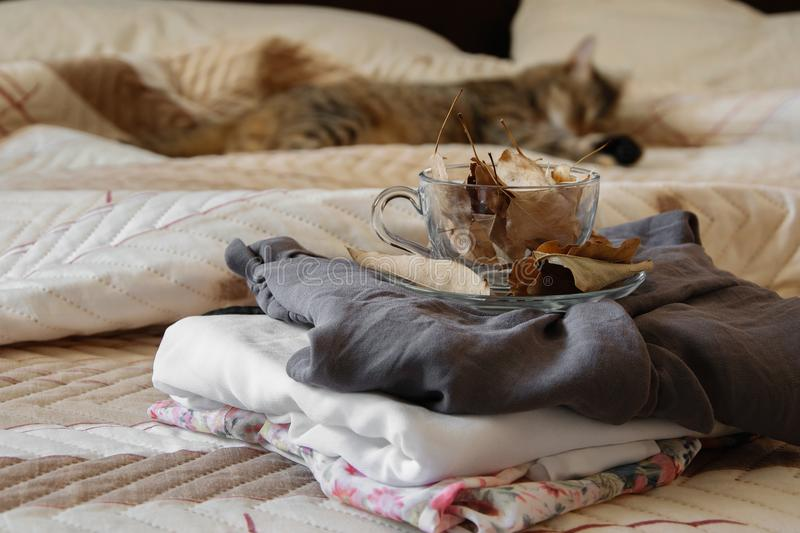 Cozy indoor autumn mood, female clothes folded on the bed with a coffee mug full of autumn leaves royalty free stock images