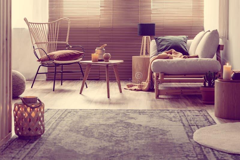Cozy living room interior with trendy furniture. Cozy living room interior with a trendy furniture stock photos