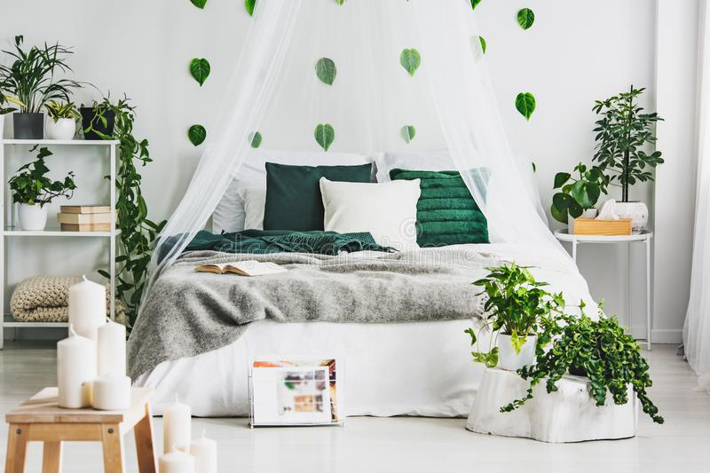 Cozy pillows on comfortable big king size bed in bright bedroom interior in elegant apartment. Cozy pillows on comfortable big king size bed in bright bedroom stock photos