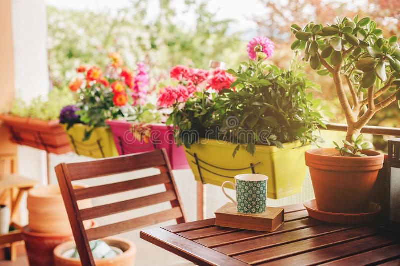 Cozy summer balcony with many potted plants. Cup of tea and old vintage book stock image