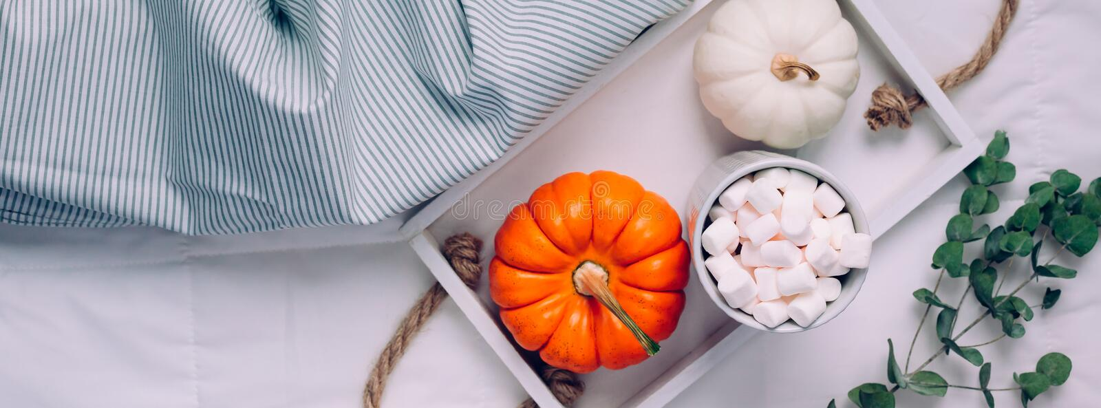 Cozy warm home comfort morning royalty free stock image