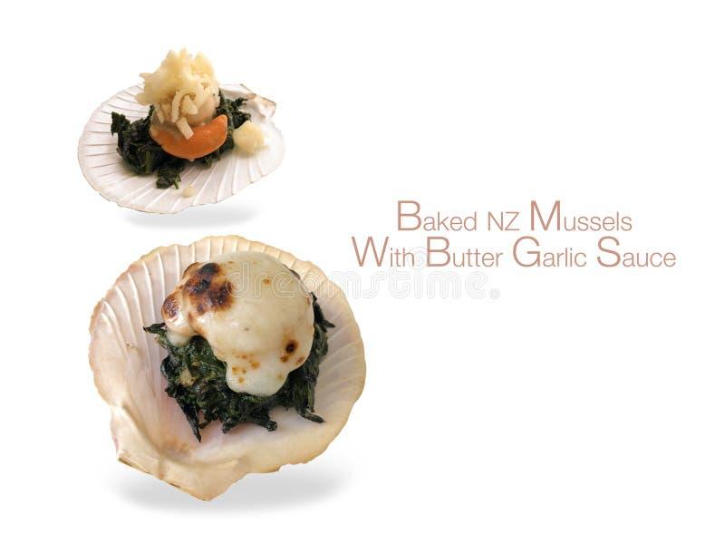 Cozze al forno di NZ con la salsa di aglio del burro con un fondo bianco fotografia stock libera da diritti