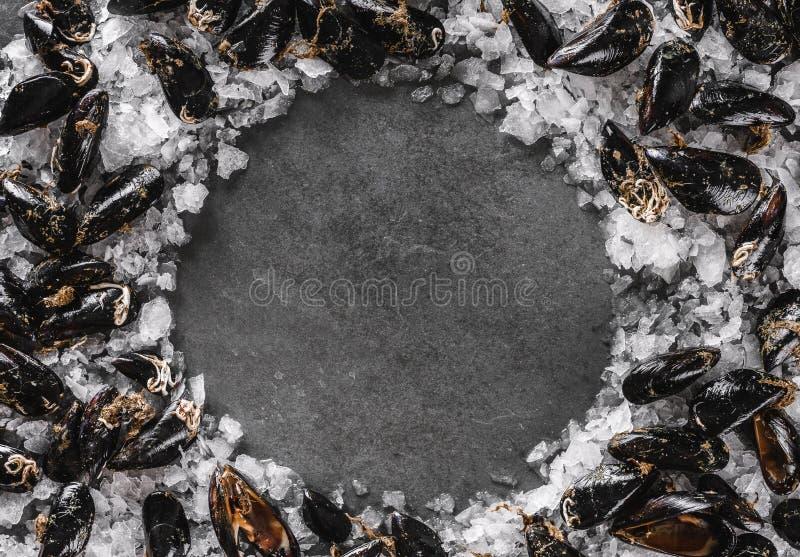 Cozze crude fresche su ghiaccio scheggiato su fondo di pietra scuro Frutti di mare, vista superiore, disposizione piana, spazio d immagine stock