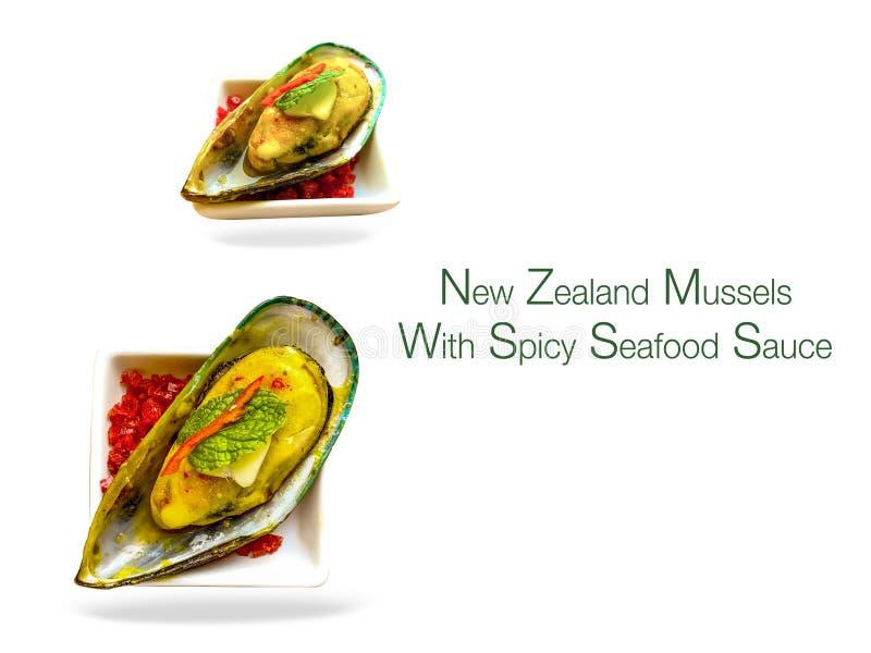 Cozze della Nuova Zelanda con la salsa di frutti di mare piccante con un fondo bianco fotografia stock