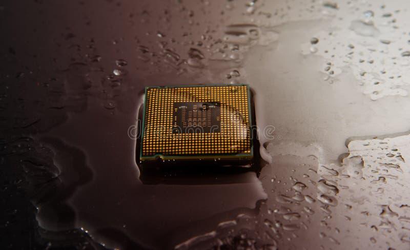 CPU bagnato immagini stock libere da diritti