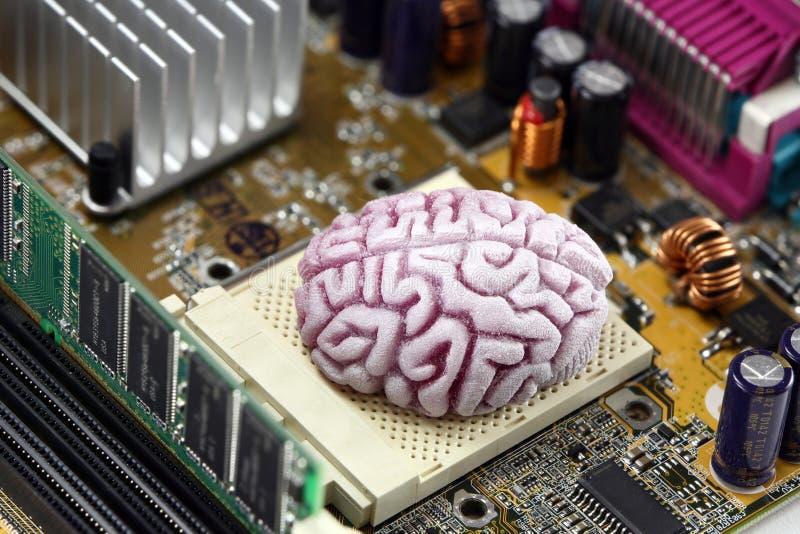 CPU del cerebro en la placa madre imagenes de archivo