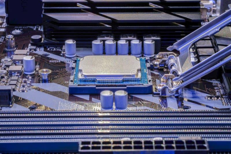 CPU-processor som installeras på håligheten av datormoderkortet royaltyfria bilder
