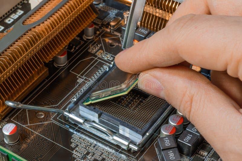 CPU-Sockel installieren lizenzfreie stockbilder
