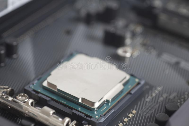 CPU in socket Intel LGA 1151 on motherboard Computer PC. Close up royalty free stock photo