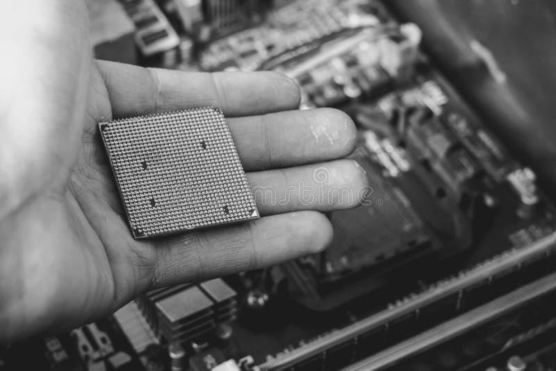 CPUen i handen arkivbild