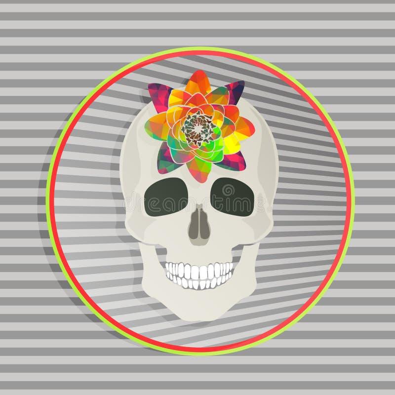 Cráneo Abstracto Con La Flor Colorida En Marco Colorido Del Círculo ...