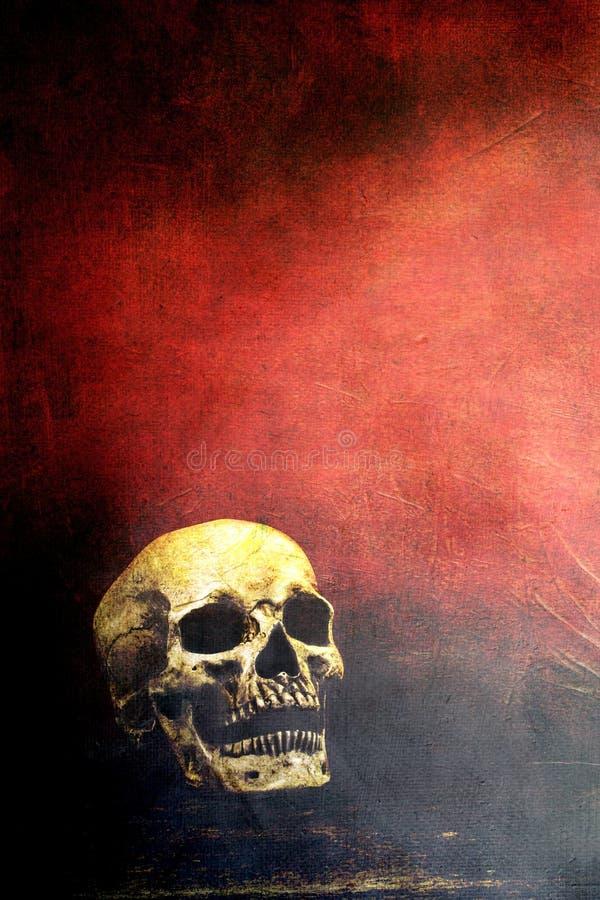 Cráneo con el espacio de la copia fotografía de archivo libre de regalías