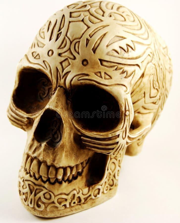 Cráneo con el grabado imágenes de archivo libres de regalías