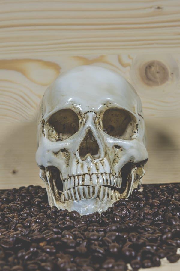 Cráneo con los granos de café foto de archivo