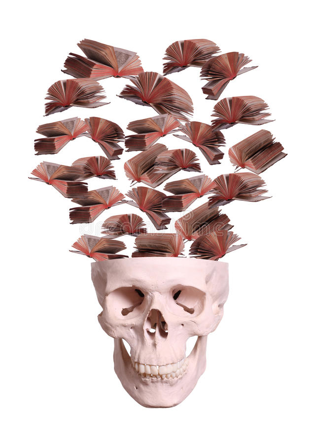 Cráneo con los libros de vuelo foto de archivo