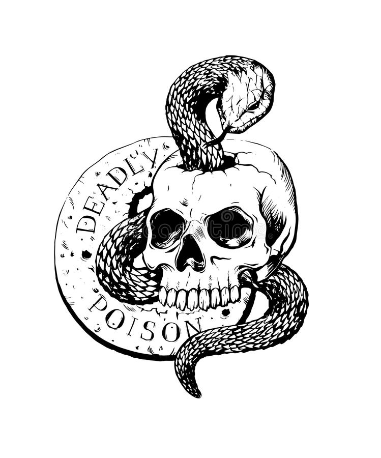 Cráneo con vector dibujado mano del ejemplo de la tinta de la serpiente ilustración del vector
