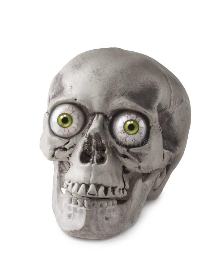 Cráneo de Halloween fotografía de archivo libre de regalías