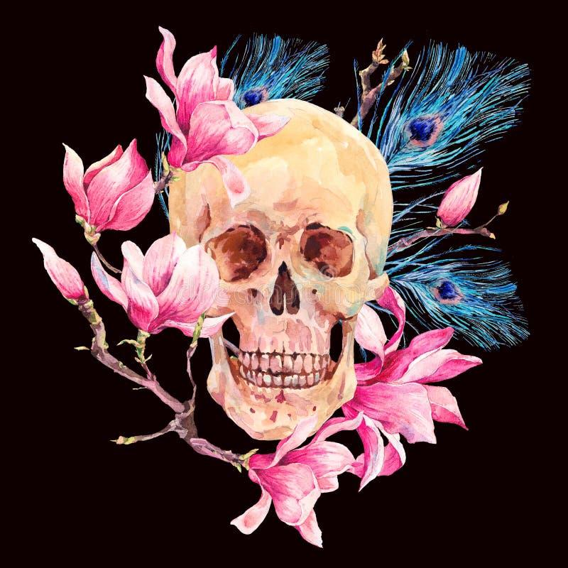 Cráneo de la acuarela y magnolia humanos de las flores del rosa ilustración del vector
