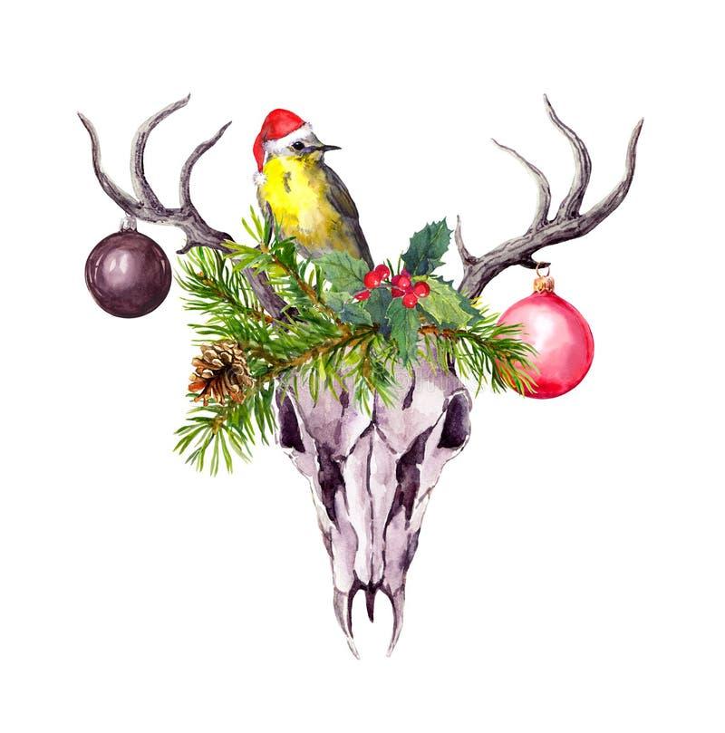 Cráneo de los ciervos de la Navidad, ramas de árbol de navidad, muérdago y bayas rojas Acuarela en estilo del boho stock de ilustración