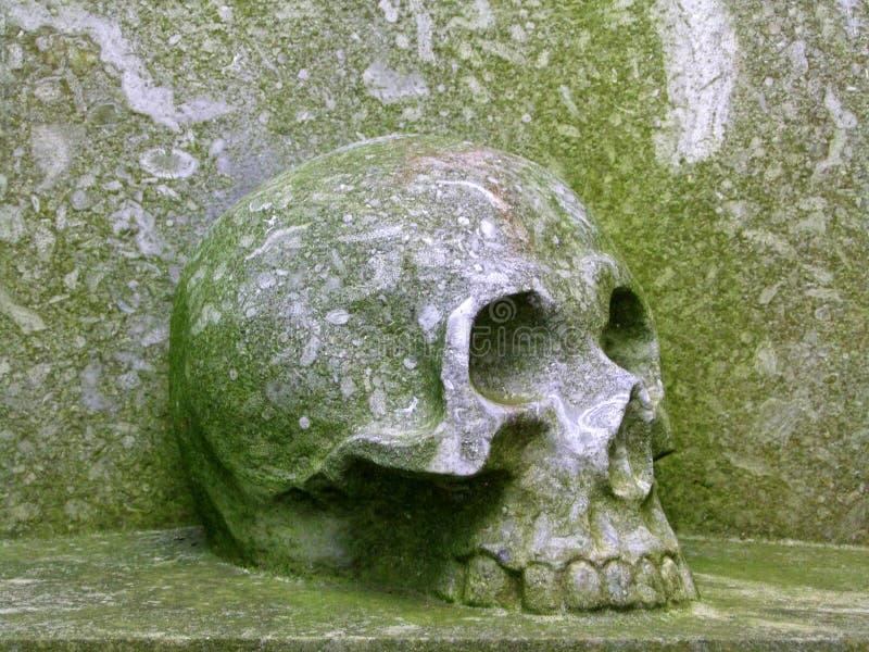 Cráneo de piedra fotos de archivo libres de regalías