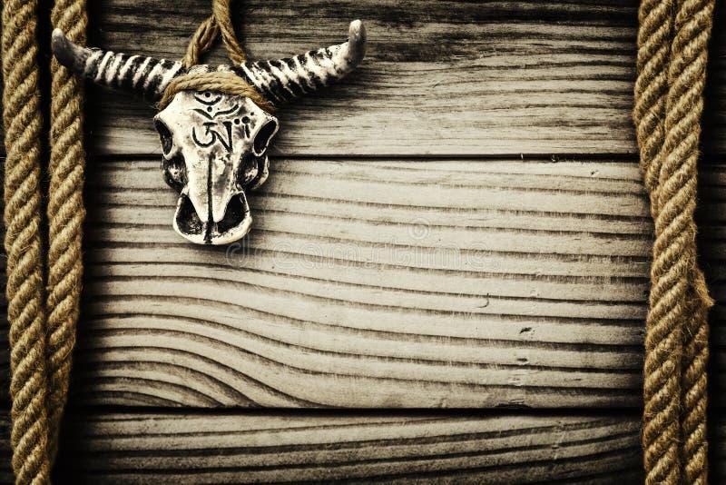 Cráneo del búfalo en fondo de madera fotos de archivo libres de regalías