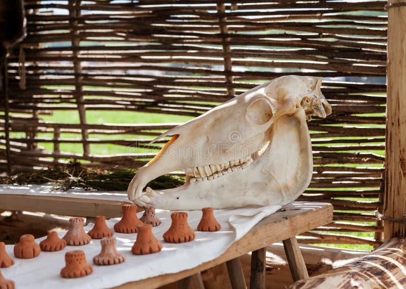 Cráneo del caballo en una tabla de madera con algunas figuras de cerámica en ella fotos de archivo libres de regalías